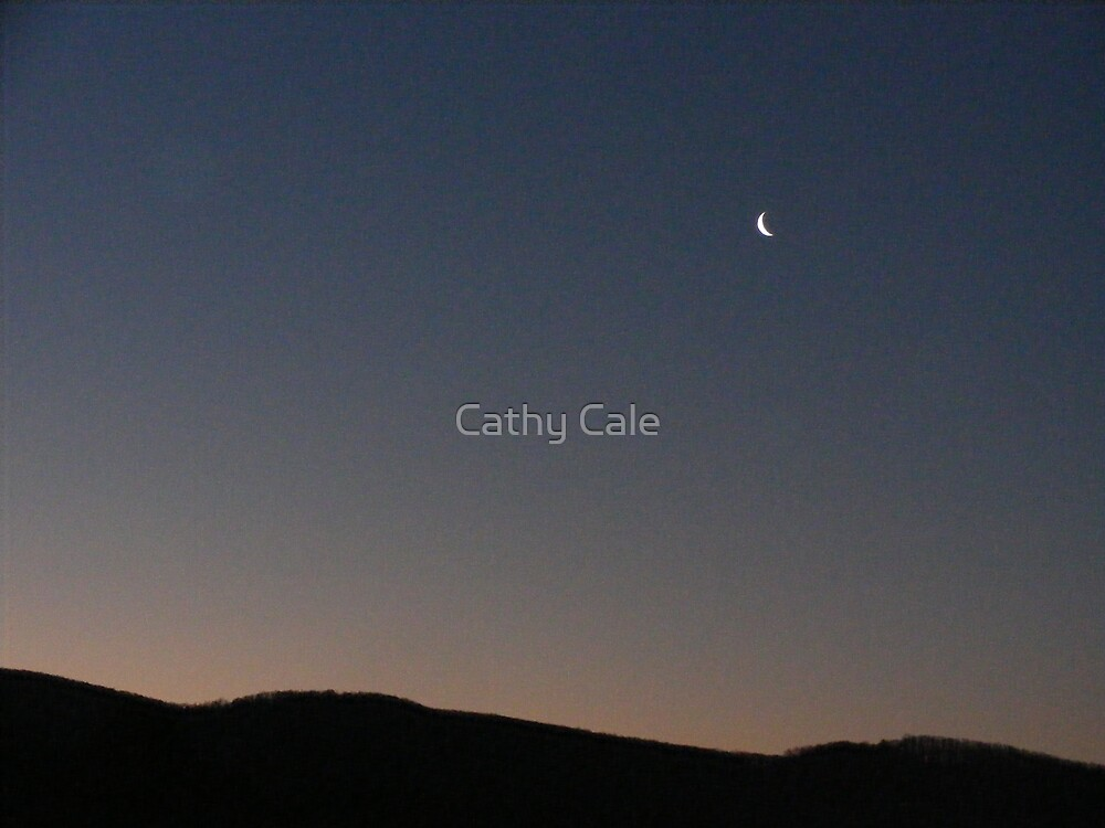 HORIZON by Cathy Cale