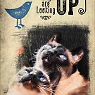 Greeting Card - Things Are Looking Up!  by Anita Pollak