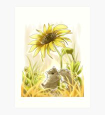 Sunlight Hamsters Art Print
