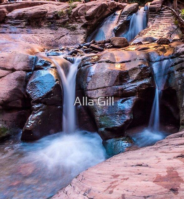 Kanarra Creek by Alla Gill