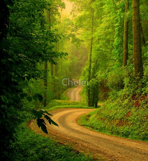 Low Gap Road  by Chelei