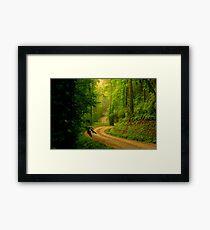 Low Gap Road  Framed Print