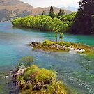 A King's River  Queenstown  by kevin smith  skystudiohawaii