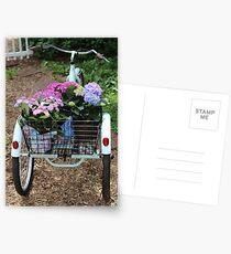 Basket Full Of Hydrangea Flowers Postcards