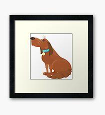 Pet Mixed Breed Dog Framed Print