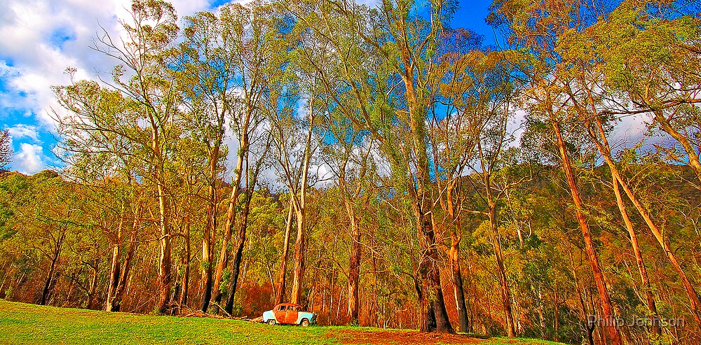 Rusted but not forgotten - Buckland Valley, Victoria by Philip Johnson
