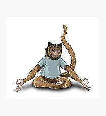Yoga Monkey Photographic Print