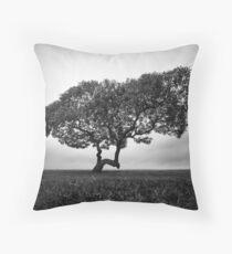 Napier Beach - Tree Throw Pillow