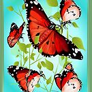 BRIGHT ORANGE BUTTERFLY by Lotacats