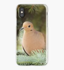 Dove iPhone Case/Skin
