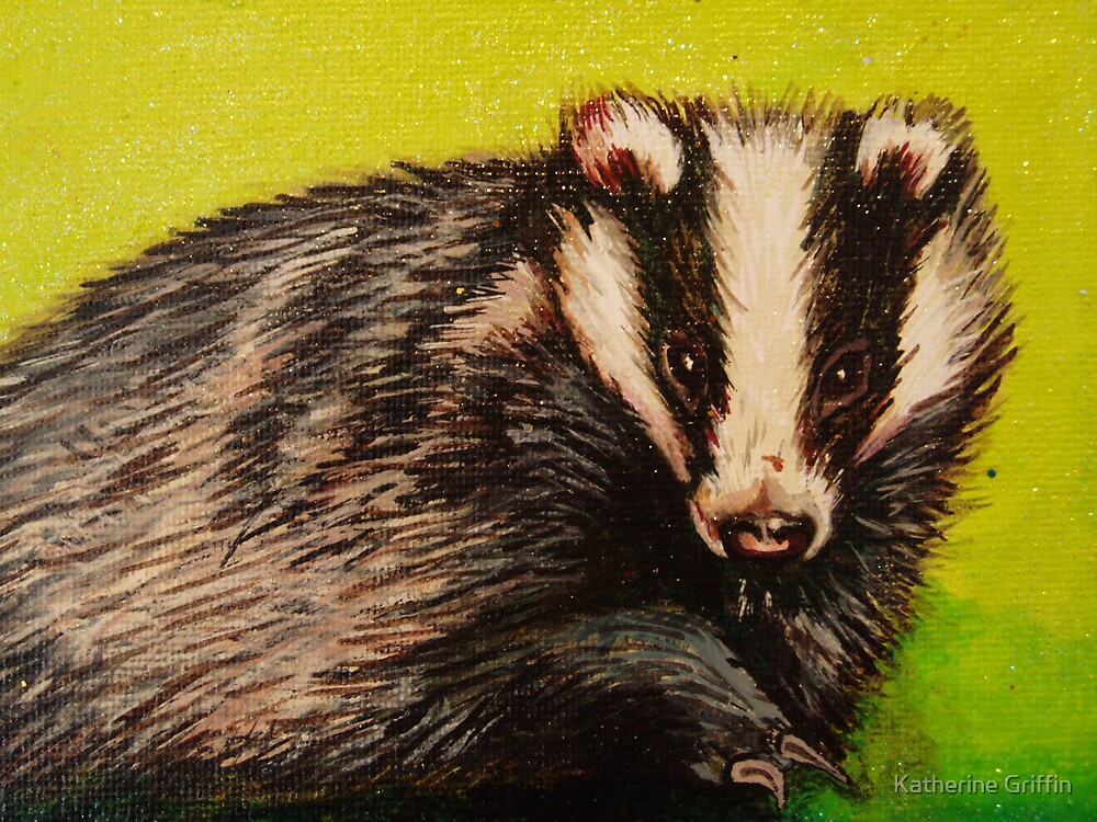 Badger by Katherine Griffin