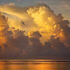 0521 Rising Clouds by Hans Kawitzki