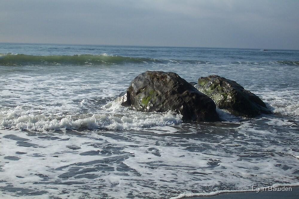 Shore Rocks by Lynn Bawden
