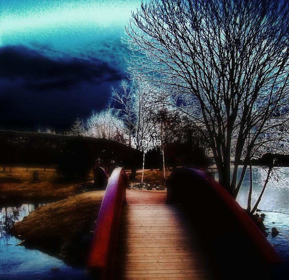 The bridge by Amkia