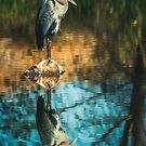 Heron My Stump by Randy Turnbow