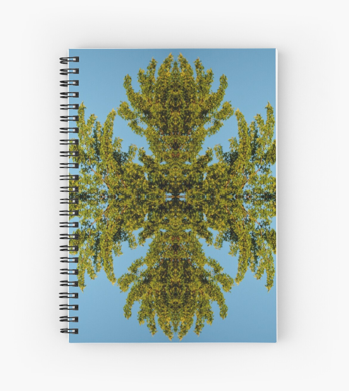 Tree Foliage Reflectogram by farmbrough