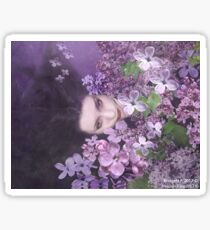 The luxury of lilacs (collaboration) Sticker
