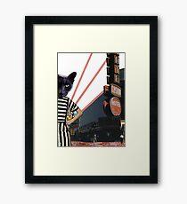 Copy cat Framed Print