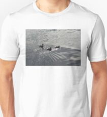 Two Guys and a Gal - Long Tailed Ducks on Water Like Silver Moire Silk T-Shirt