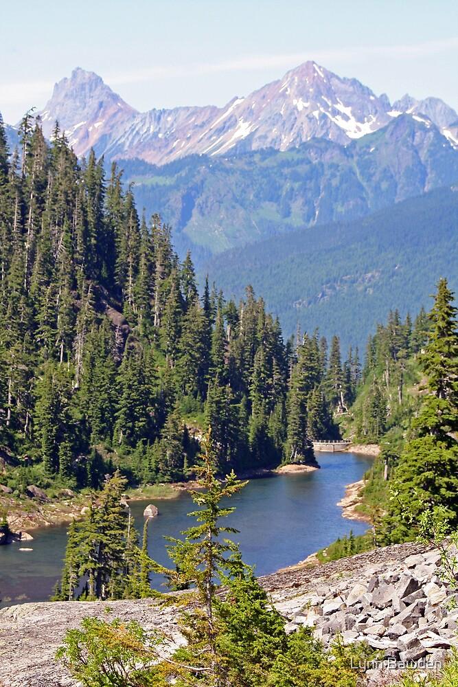 The North Cascades by Lynn Bawden