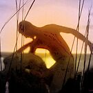 Silhouette Dance at Dusk by Anthea  Slade