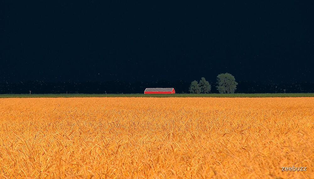 Solitude by zeebuzz