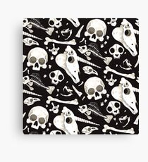 black Skulls and Bones - Wunderkammer Canvas Print