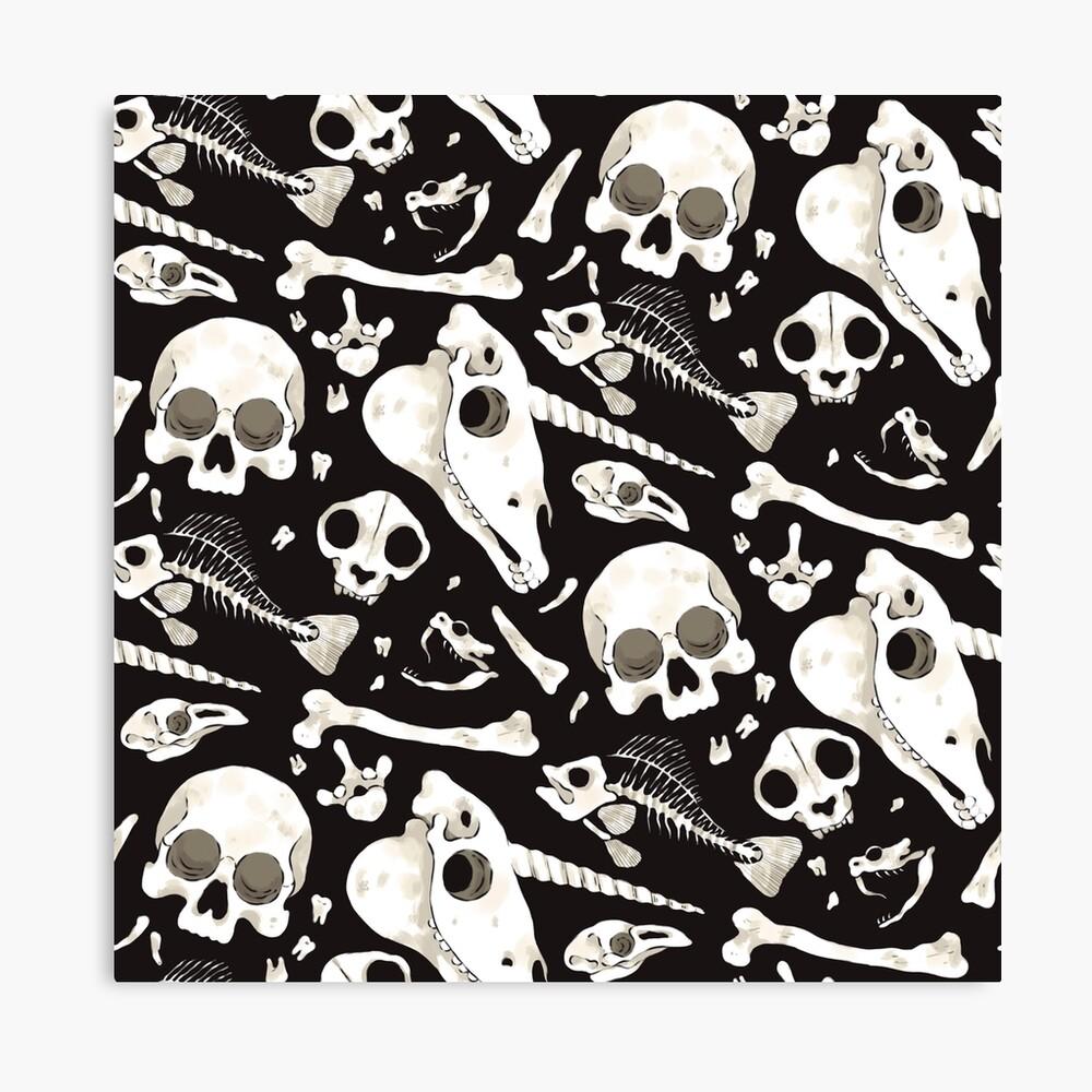 Cráneos y Huesos negros - Wunderkammer Lienzo