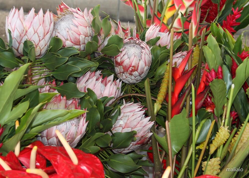 Tropical Flowers 3 by maliaio