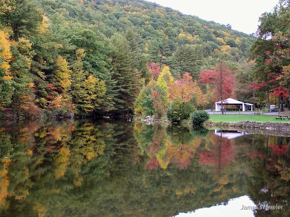 Autumn at Lykens Glen Park by James Wheeler