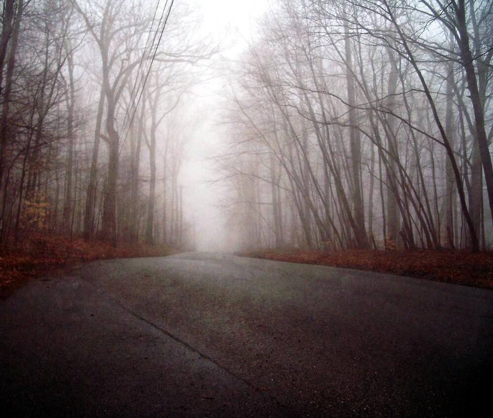 Down a foggy road  by Judi Taylor