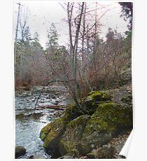 Bear Creek I Poster