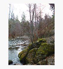 Bear Creek I Photographic Print