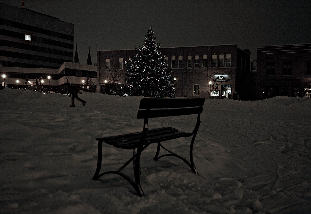 THE BENCH by martin venit