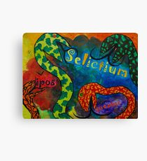 Selictium ipos quexius Canvas Print