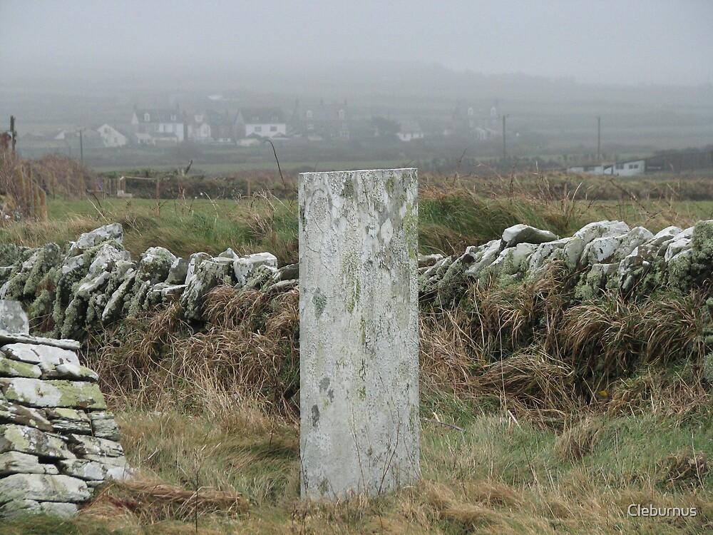 A Simple Stone. by Cleburnus