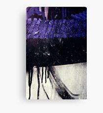 J3 Canvas Print