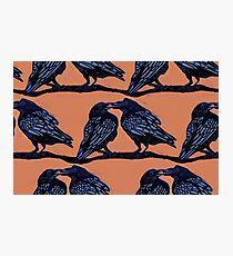 Orange Crows Photographic Print