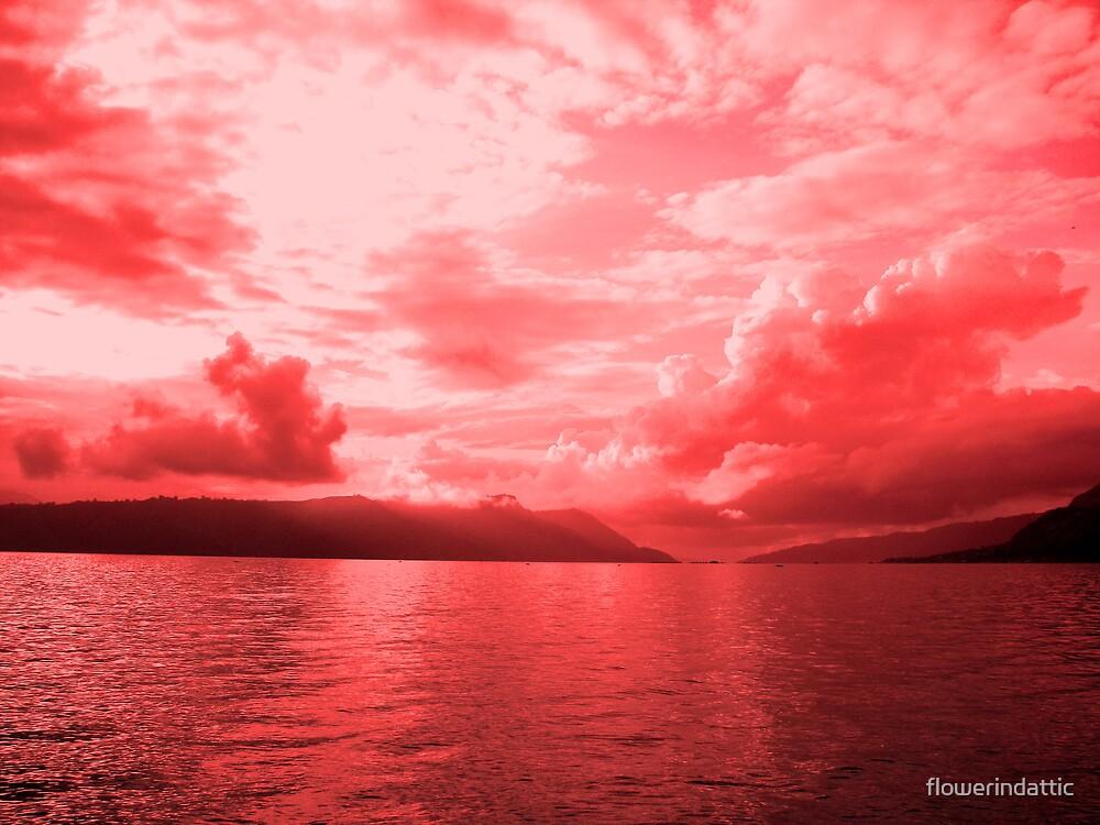 red sky by flowerindattic