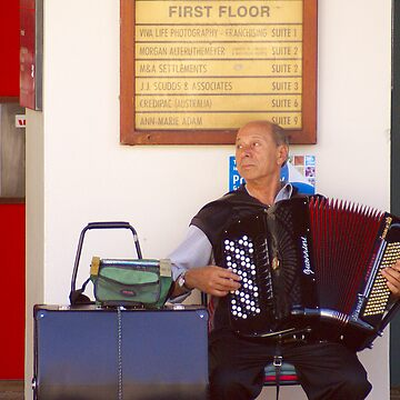 the accordion player by alistair