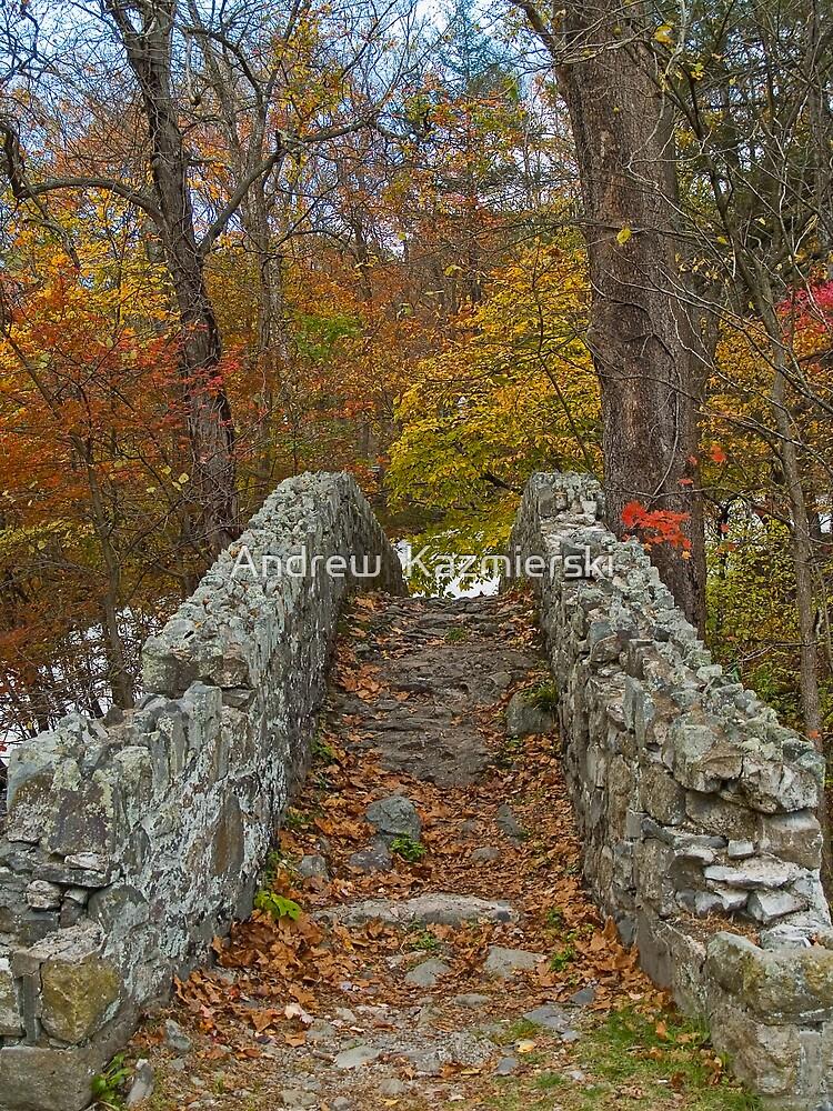 Old Stone Bridge by andykazie