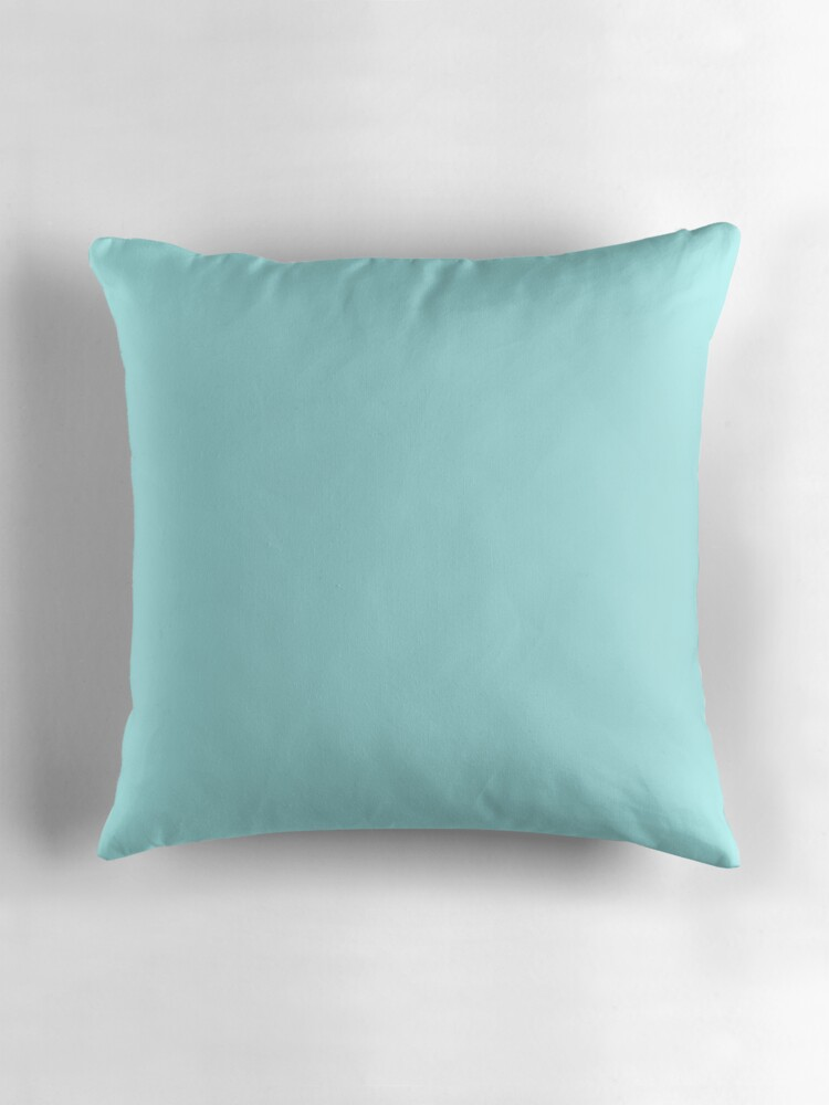 Pale Aqua Throw Pillow :