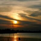 Heron Sunset by Jonicool
