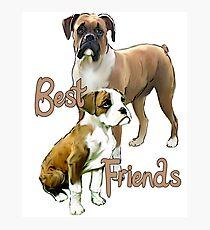 Boxers Best Friends Photographic Print