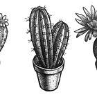 « Cactus » par Carole Bielicki