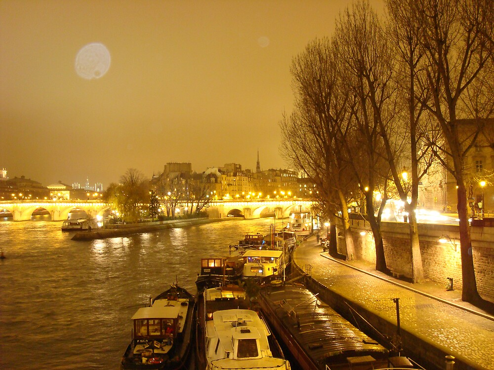 Slumbering Boats on the River Seine by Nico3