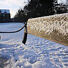Snow-Covered Park Bench by Ms-Bexy