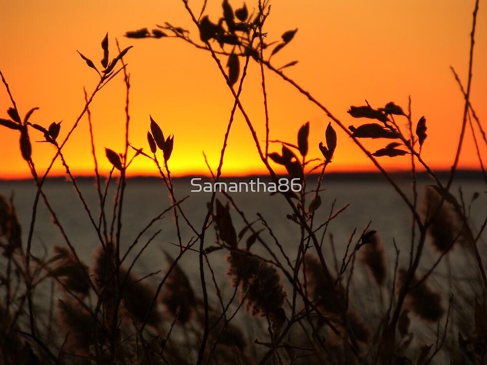 Sunset by Samantha86