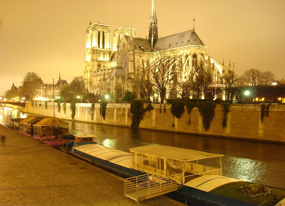 A Glowing Notre Dame by Nico3