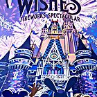 Wishes! Poster by APOFphotography